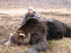Big Brown bear / Gran Oso Parde