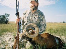 Mouflon & Fallow deer